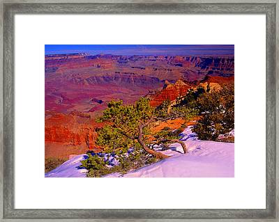 Grand Canyon In Winter Framed Print