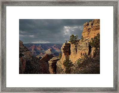Grand Canyon National Park, Bright Framed Print by Ed Freeman