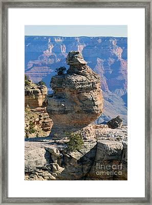 Grand Canyon National Park Cap Rock Formation Framed Print