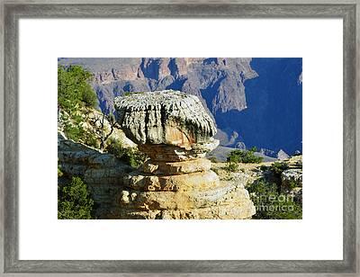 Grand Canyon National Park Cap Rock Framed Print by Shawn O'Brien