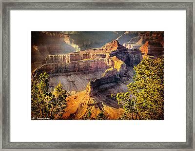 Grand Canyon National Park Framed Print by Bob and Nadine Johnston