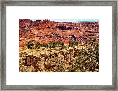 Grand Canyon National Park South Rim Framed Print by Bob and Nadine Johnston