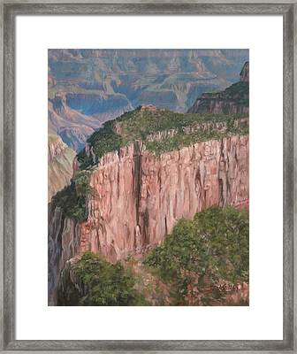 Grand Canyon North Rim Framed Print by David Stribbling