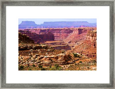 Grand Canyon Of Utah Framed Print by Adam Jewell