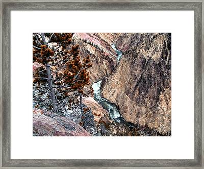 Grand Canyon Of Yellowstone 5 Framed Print
