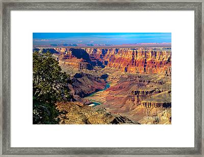 Grand Canyon Sunset Framed Print by Robert Bales