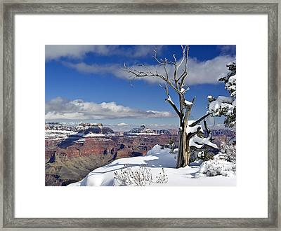 Grand Canyon Winter -2 Framed Print