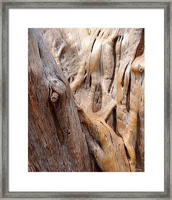 Grand Canyon Wood Framed Print
