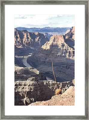 Grand Canyon Framed Print by Yosi Cupano