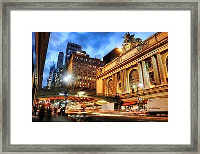 Grand Dame Framed Print by Diana Angstadt
