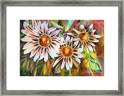 Grand Gazanias Framed Print