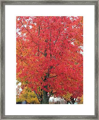 Grand Haven Red Framed Print