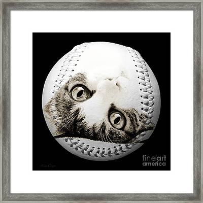 Grand Kitty Cuteness Baseball Square B W Framed Print by Andee Design