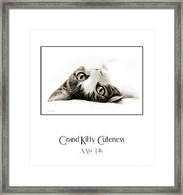 Grand Kitty Cuteness Miss Tilly Poster Framed Print by Andee Design