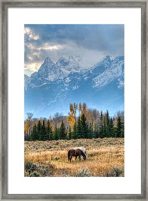Grand Landscape  Framed Print