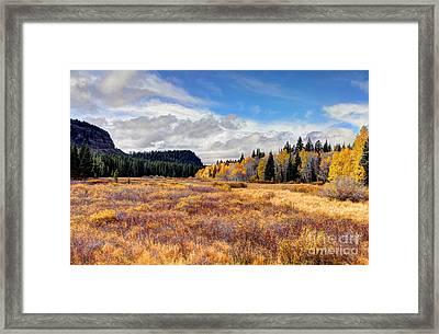 Grand Mesa Colors Framed Print by Bob Hislop