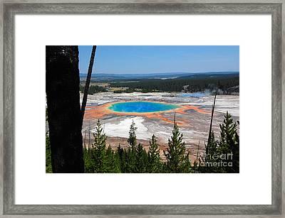 Grand Prismatic Spring From Hillside Framed Print by Debra Thompson
