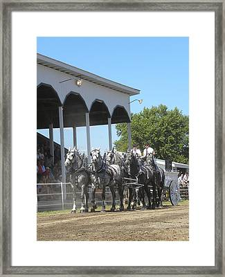 Grand Stand Worthy Framed Print