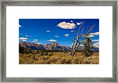Grand Tenton Overlook Framed Print