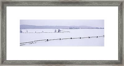 Grand Teton National Park In Winter Framed Print