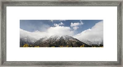 Grand Teton National Park Framed Print by Wildlife Fine Art