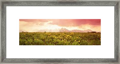 Grand Teton Park, Wyoming, Usa Framed Print by Panoramic Images