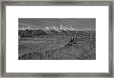 Grand Teton Repose Framed Print by June Jacobsen