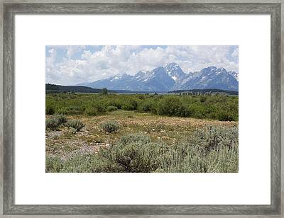 Grand Tetons From Willow Flats Framed Print by Belinda Greb