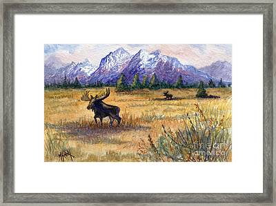 Grand Tetons Moose Framed Print by Marilyn Smith