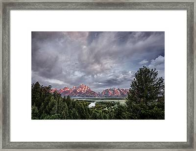 Grand Treeton Framed Print