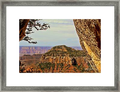 Grand Window Framed Print by Leslie Kirk