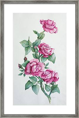 Framed Print featuring the painting Grandma Helen's Roses by Katherine Young-Beck