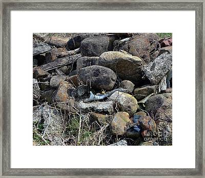 Grandma's House Framed Print by Brenda Dorman