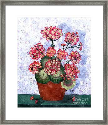 Grandmothers Geraniums In Watercolor Framed Print by Barbara Griffin