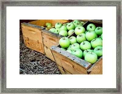 Grandpa's Gold Framed Print by Vinnie Oakes