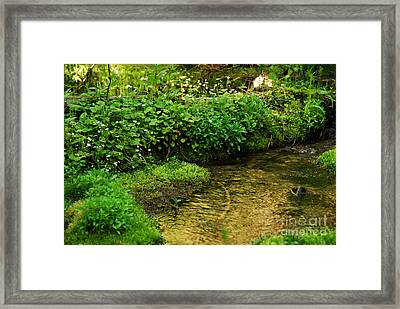 Granite Creek Framed Print