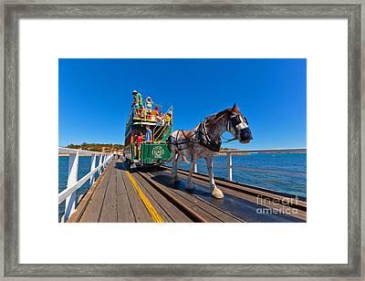 Granite Island Tram Framed Print by Bill  Robinson