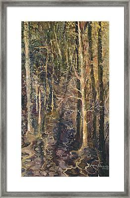 Granpepere's Woods Framed Print