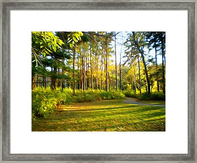 Grant Park Sunset Framed Print by Geoff Strehlow