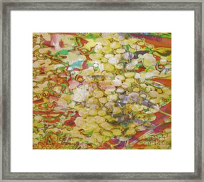 Grape Abundance Framed Print
