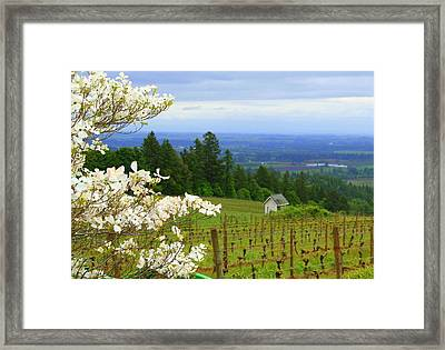 Grape Awake Framed Print