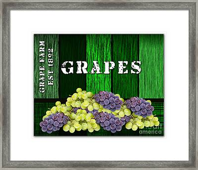 Grape Farm Framed Print