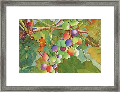 Grape Fusion Framed Print by Judy Mercer