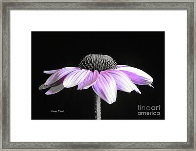 Grape Mist Framed Print by Jeannie Rhode