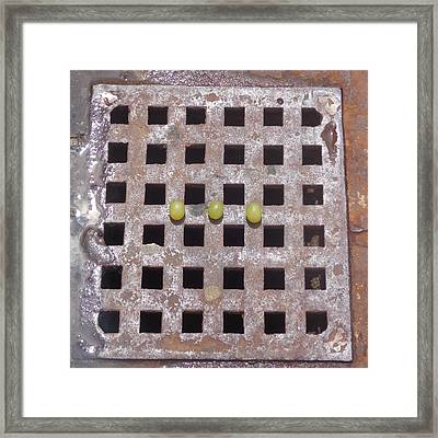 Framed Print featuring the photograph Grape N Grate Still-life by Christina Verdgeline