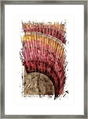 Grape Stains Framed Print by Claire Hull