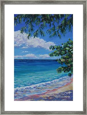 Grape Tree On 7-mile Beach Framed Print by John Clark