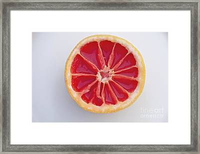 Grapefruit Mandala Framed Print
