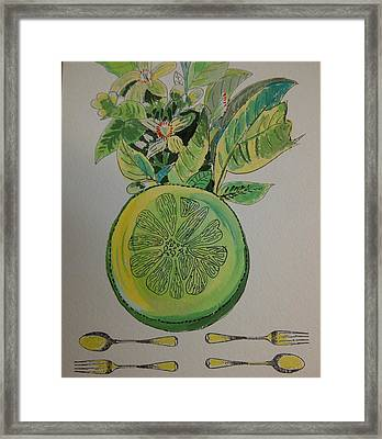 Grapefruit Framed Print by Olivier Calas