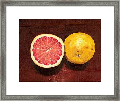Grapefruits Oil Painting Framed Print by